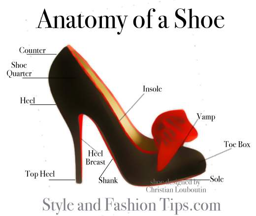 anatomy of a shoe